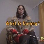 What is Caning? Information on Spanking with Canes in BDSM