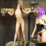 Mistress And Her Slave Have Some Fun
