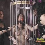 Pamela is abducted from work and caged like an animal by three dommes