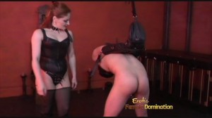 Cruel CBT Mistress playing with slave's cock and balls