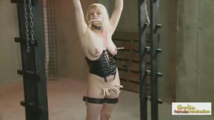 Bound blonde is whipped all over before being made to cum hard
